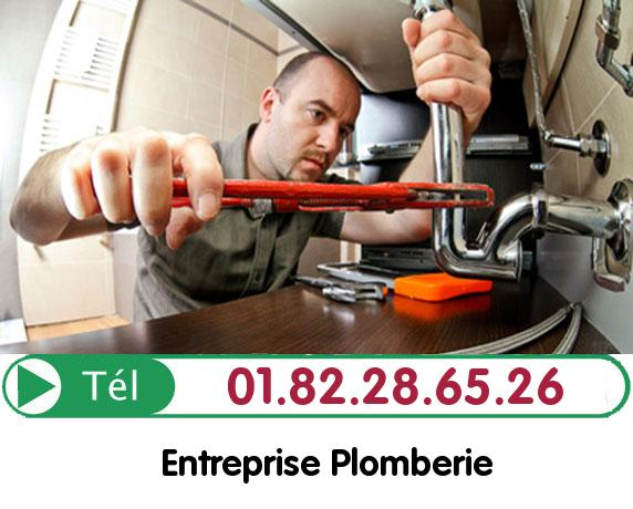 Canalisation Bouchée Roissy en Brie 77680